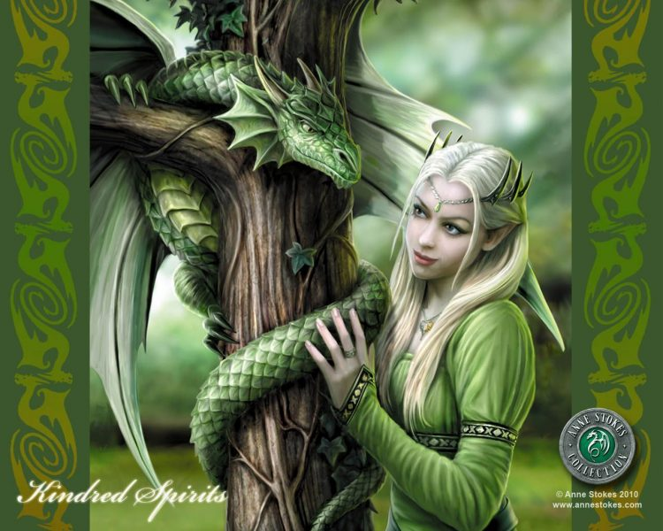 dragon enchanteresse elfe